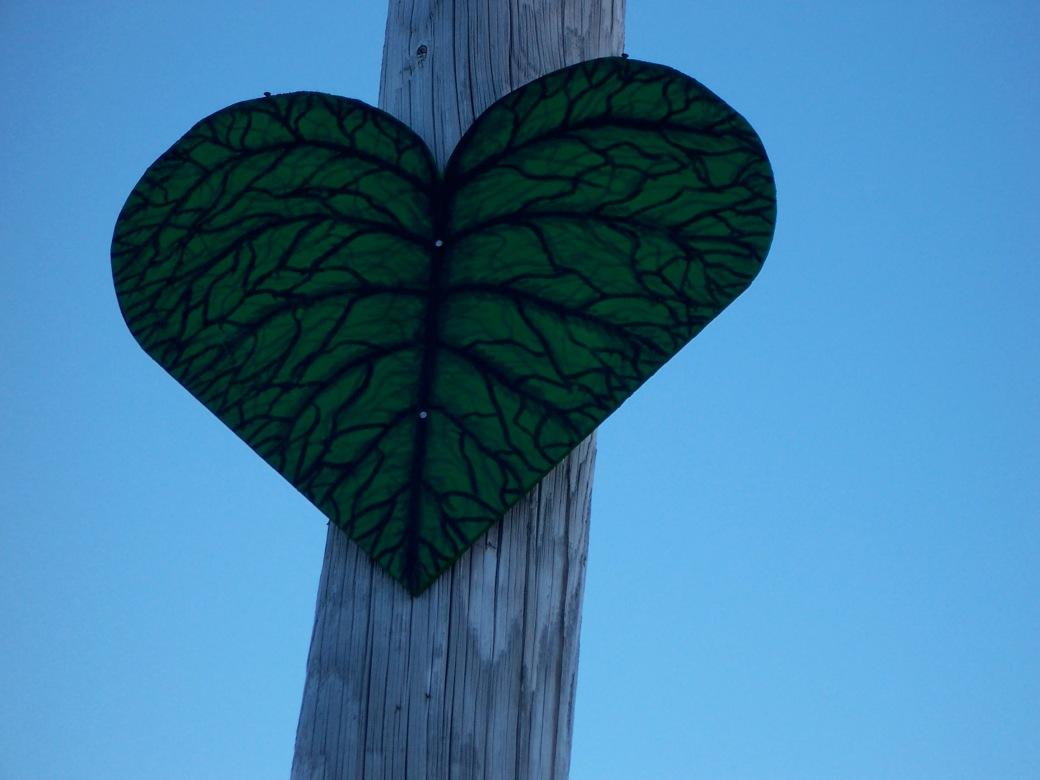 Corazones - Leaf